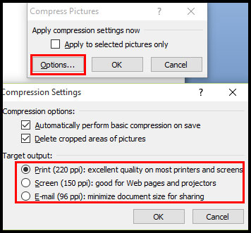 Compress picture option in PowerPoint 2007