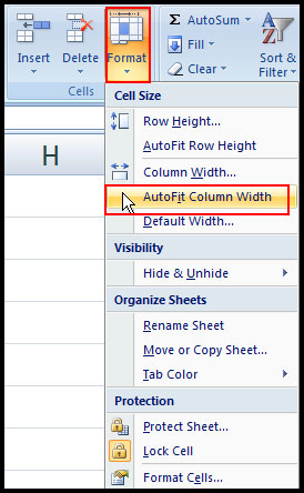 Auto Fit column width in Excel 2007