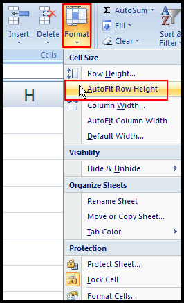 AutoFit Row height in Excel 2007