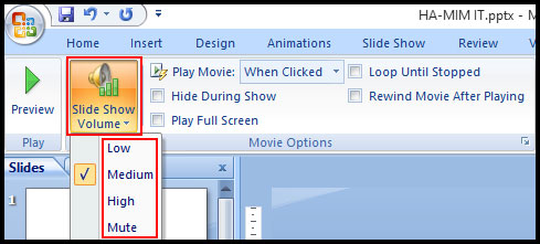 Change volume slide movie in PowerPoint 2007