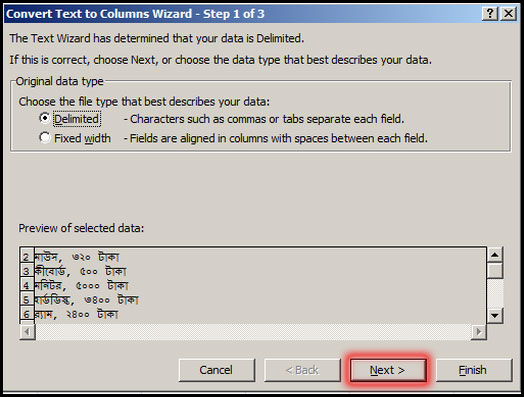 Convert Text to Columns Wizard 1 of 3 in Excel 2007