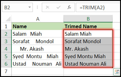 Result of Using Trim Function with Example in Excel