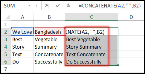 Result of Using Concatenate Function with Example in Excel