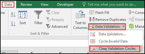 Clear Invalid Data validation circles in Excel