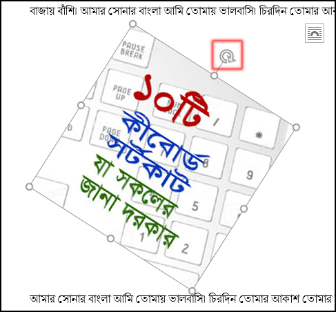 How to rotate picture in MS Word 2016 Bangla Tutorial