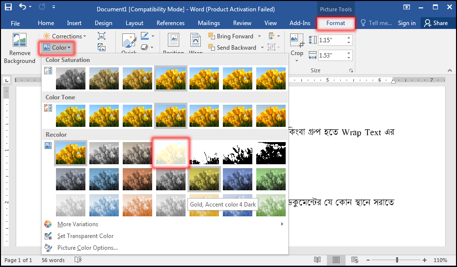 How to change image color in MS Word 2016 Bangla Tutorial