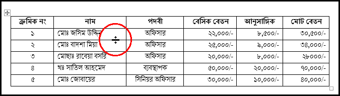 Resize Rows Height in MS Word 2016 Bangla Tutorial