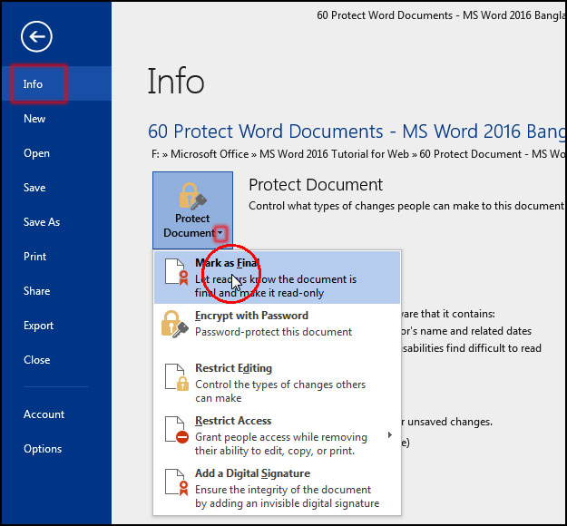 Read Only Document Mark As Final in MS Word 2016 Bangla Tutorial